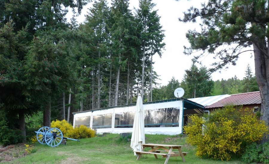 camping la chanterelle snack bar (2)